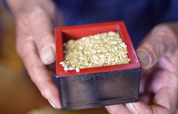 新海秀次さんのお米 ~50年かかって作り上げた無農薬栽培のお米~