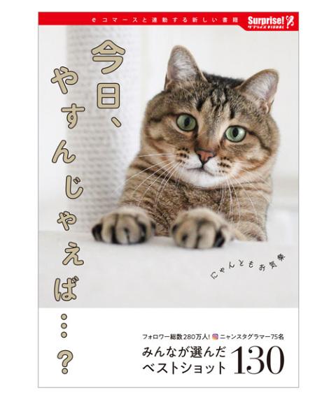 本,読書,おうち時間,サプライズブック,今日、やすんじゃえば…?,猫,ネコ